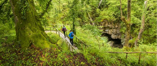 Cladagh Glen Nature Reserve Walk Is Open