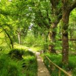 Outdoor activities in County Fermanagh
